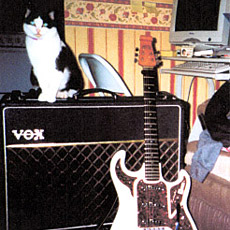 Bill's Burns Hank Marvin guitar, Vox AC30 and Dusty