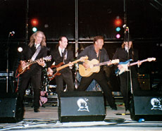 Marty Wilde and the Wildcats 1994